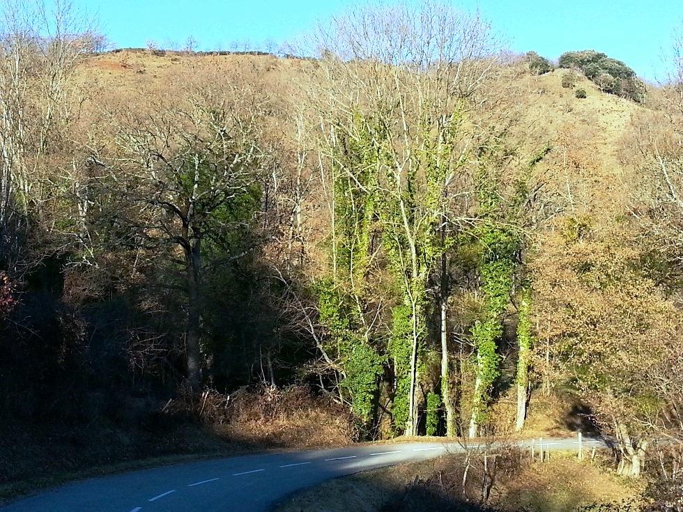30p Sarnac hiver-amélioré-20131220_155555